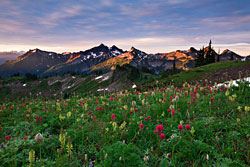 Tatoosh Splendor by Kevin Pieper
